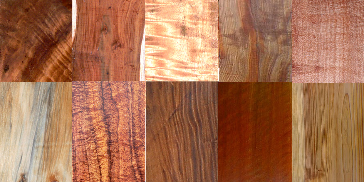 Roy Lambrecht Koa Slabs Service 5 We Have Curly Koa Slabs